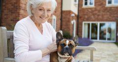 long term care anchor wealth management lanark