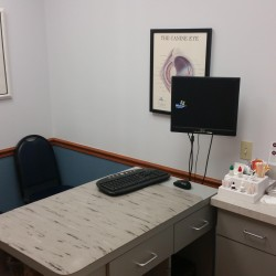 Exam room #3 at Animal Eye Associates