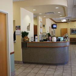 View 2 of front desk at Animal Eye Associates