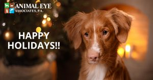Happy holidays from the Animal Eye Associates