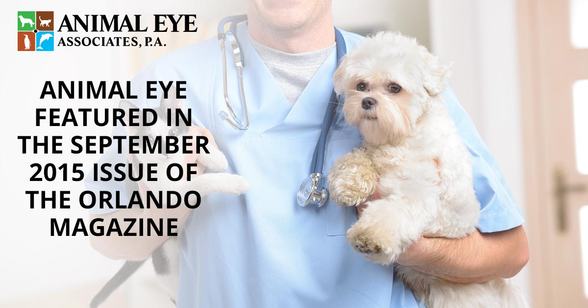 Animal eye specialists featured in the September 2015 issue of The Orlando Magazine