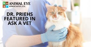 Our animal eye specialist Dr. Priehs was featured in Ask A Vet