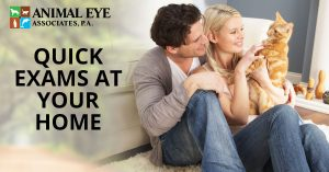 Quick animal eye exams at your home