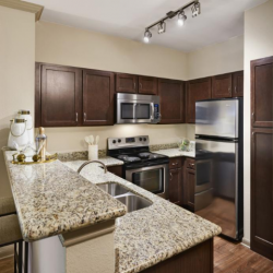 Kitchen at Camden Midtown Apartments in Houston