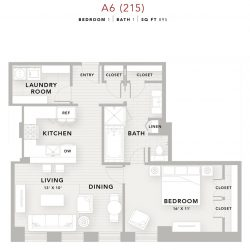 The Star Downtown Houston Apartment 1 bedroom, 895ft² floorplan