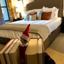 Shows the one bedroom with an elf between books