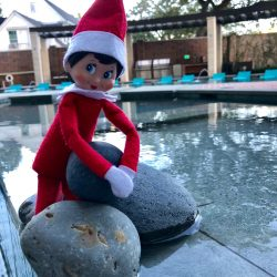 Elf on the shelf picking up rocks by the swimming pool