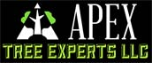 Apex tree experts