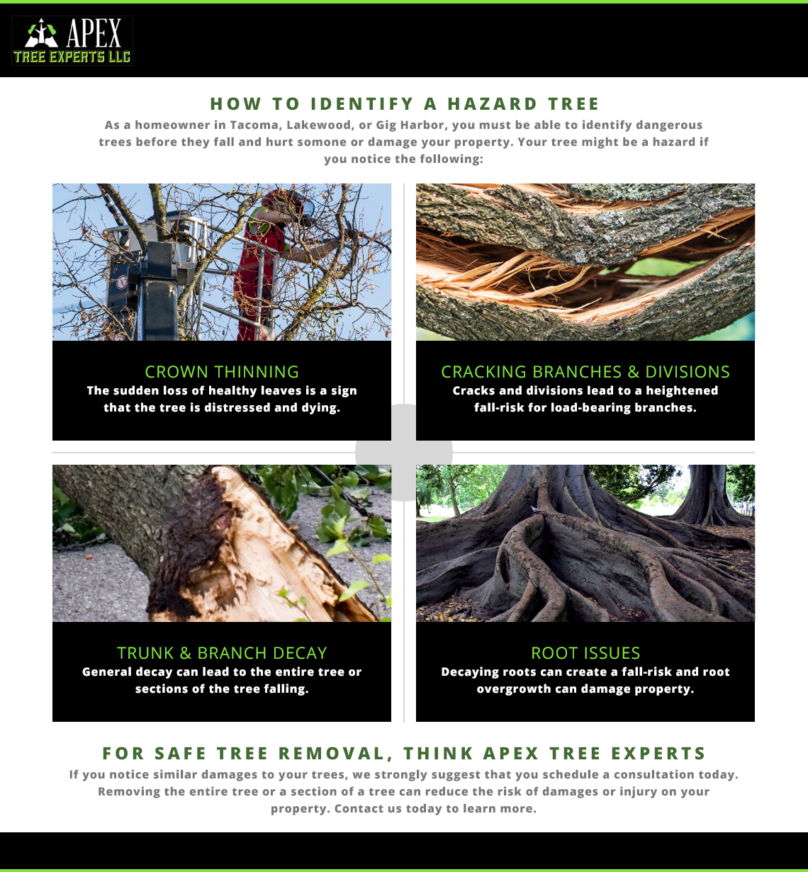 How to identify a hazardous tree.