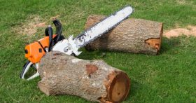 Xhainsaw and cut up tree.