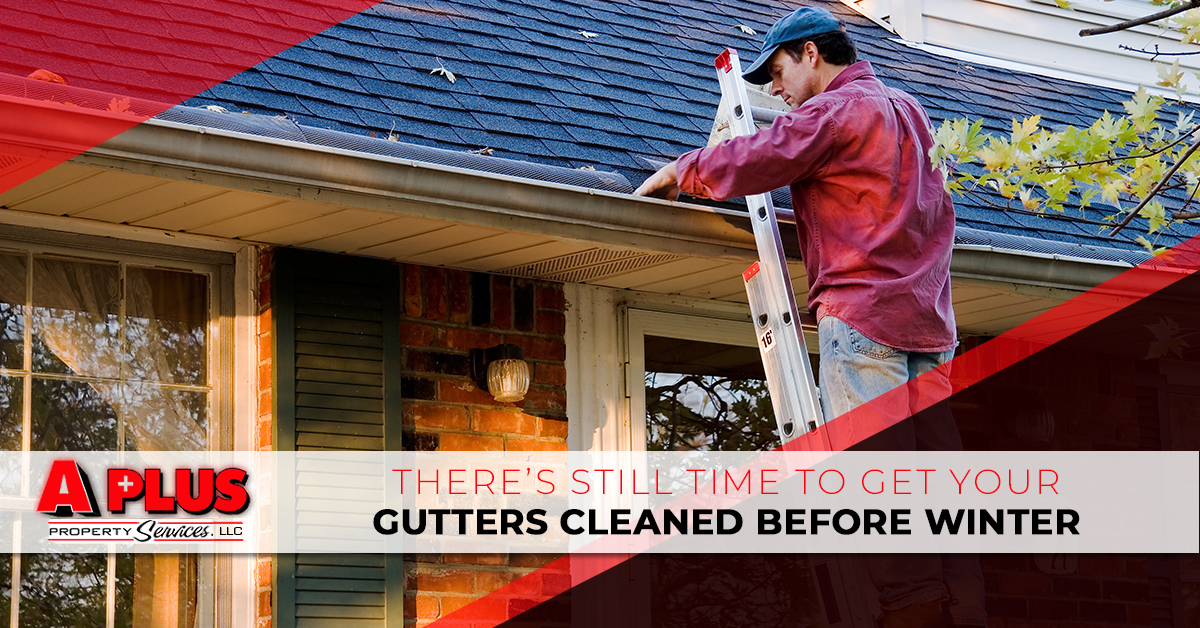 Get Your Gutters Cleaned