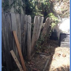 Damaged Cedar Fence