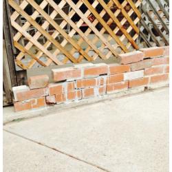 Wall and Lattice Repair Before