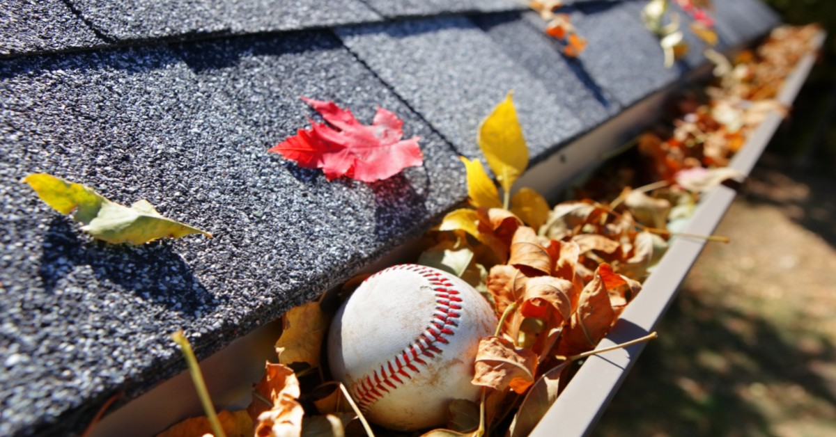 Baseball Stuck in Roof Gutter With Leaves
