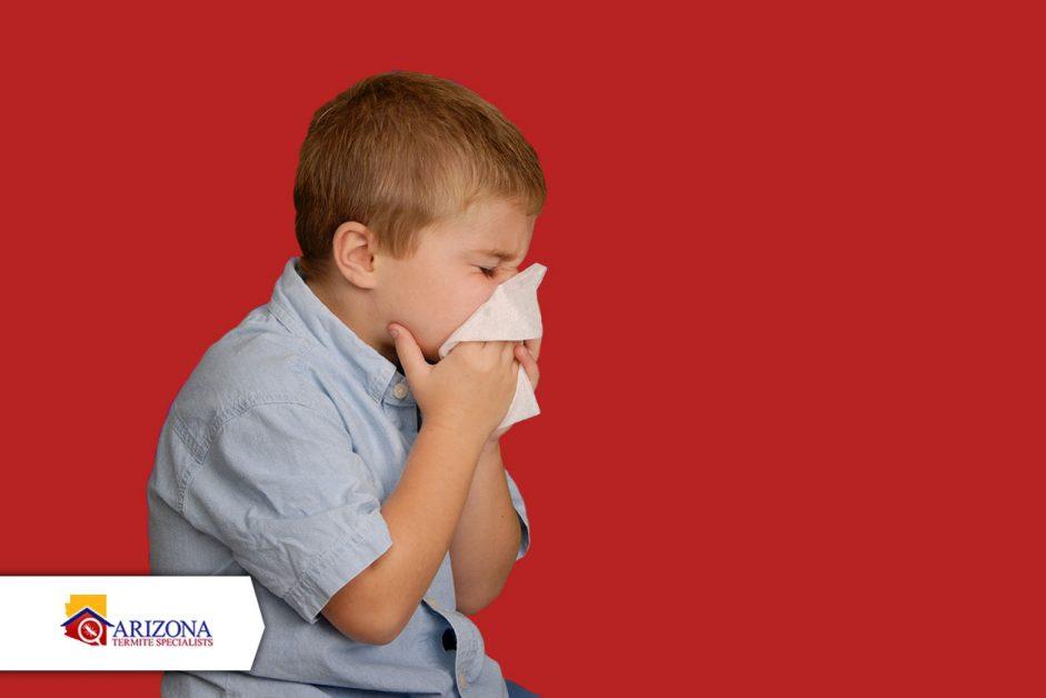 Termite Allergies