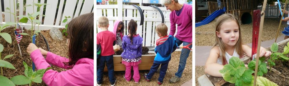 farm-to-pre-school