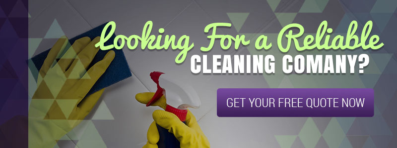 Carpet Cleaners Wildomar: Why You Should Hire Professionals