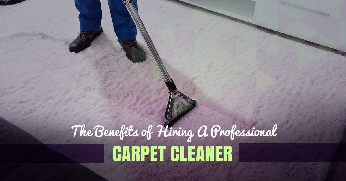 Image result for Benefits of hiring a professional carpet cleaning service?