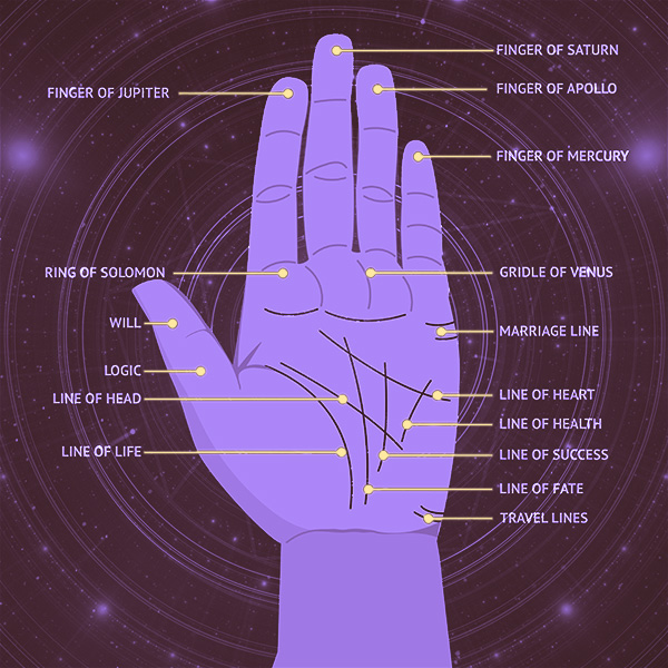 Psychic Reading Chicago: Psychic Readings: What Palm Reading