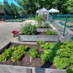 The outdoor garden at our Sheldon child care center