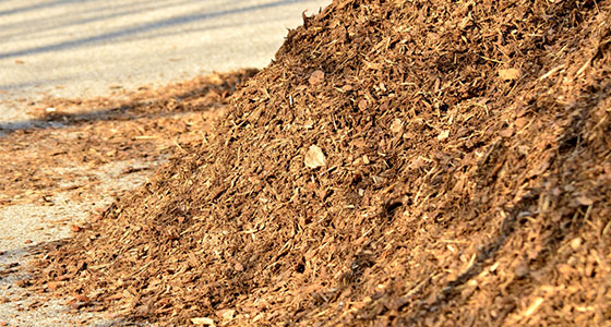 mulch-inner-resized