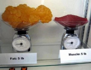 Would you rather have the 5 pounds of Fat or the Sexy 5 Pounds of Muscle on your right?