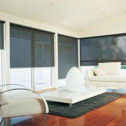 Modern Office Window Shades - Austin Shade Team