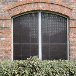 Low Density Black Screens For Windows - Austin Shade Team