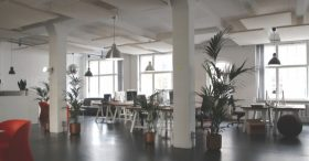 Open office space with plants and large windows Automated Lights and Shades Manhattan
