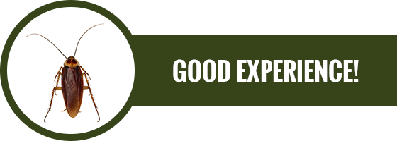 Good Experience Button