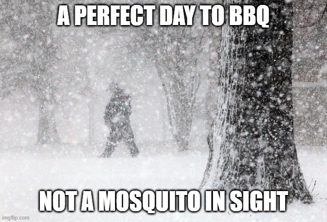 Snow = no mosquitos. Perfect time to BBQ.