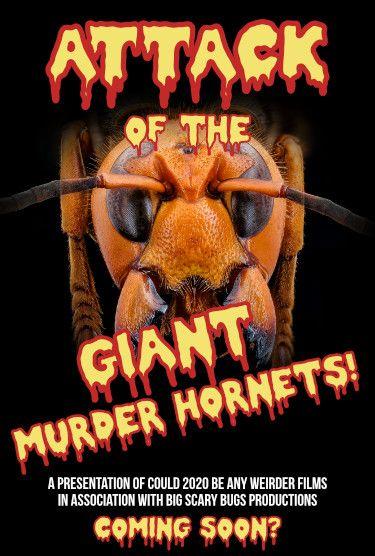 Giant Murder Hornets horror film poster
