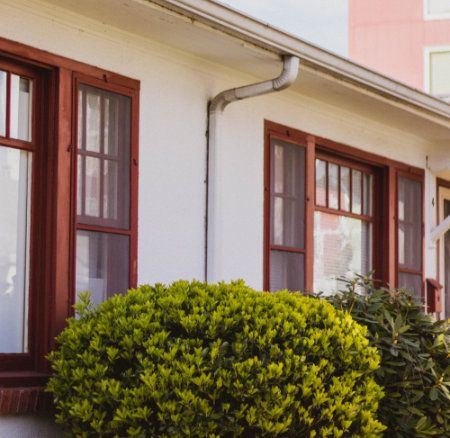How To Treat Pests in Apartments and Duplexes