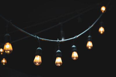 String lights and ants