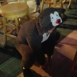 Image of Man Wearing Dog Costume