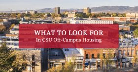 """What to look for in CSU off-campus housing"" banner"