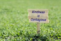 wooden sign that reads 'kindness is contagious'