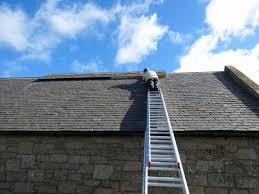 Image of Roof Inspection Mount Juliet