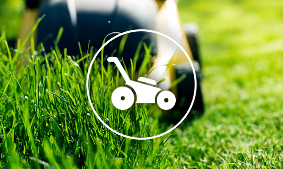 Lawn Mower With Mower Icon