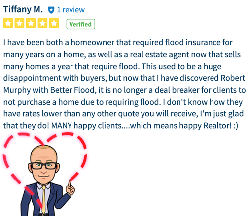 Flood nerd reveiw from a realestate agent