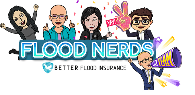 Flood Nerds save our clients money