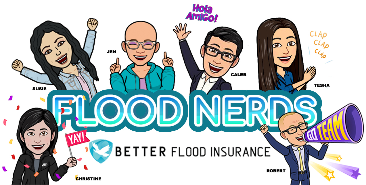 Flood Nerds are here to help
