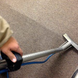 protect your carpet carpet cleaning