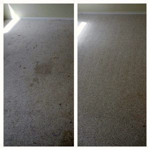 clean carpets San Antonio