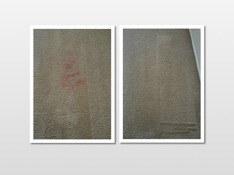 satisfaction guarantee carpet cleaning