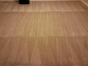 carpet cleaning customer service san antonio