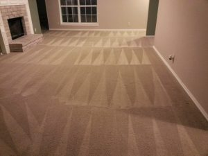 carpet cleaners in San Antonio