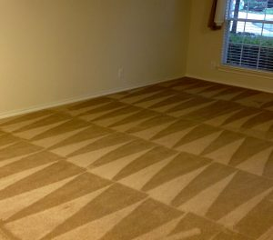 clean start carpet cleaning San Antonio
