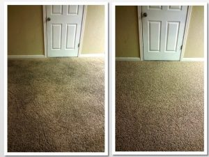 carpet cleaning overrated