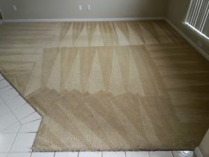 san antonio carpet cleaners clean carpets